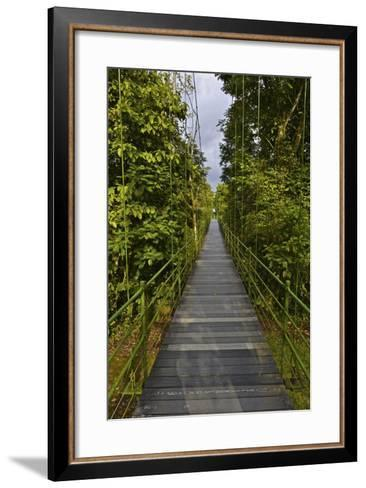 A Boardwalk Leads Through the Rain Forest at Costa Rica's La Selva Biological Station-Kike Calvo-Framed Art Print