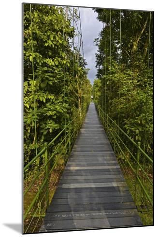 A Boardwalk Leads Through the Rain Forest at Costa Rica's La Selva Biological Station-Kike Calvo-Mounted Photographic Print