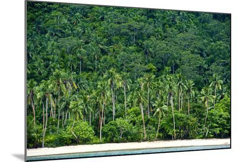 Tropical Rainforest and Palm Trees Line a Beach on a Deserted Island-Jason Edwards-Mounted Photographic Print