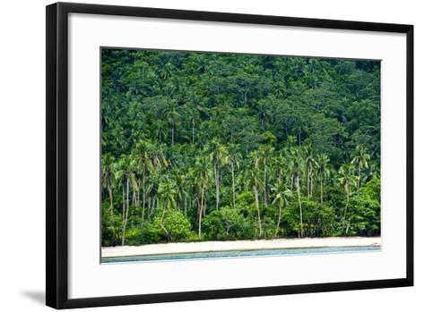 Tropical Rainforest and Palm Trees Line a Beach on a Deserted Island-Jason Edwards-Framed Art Print