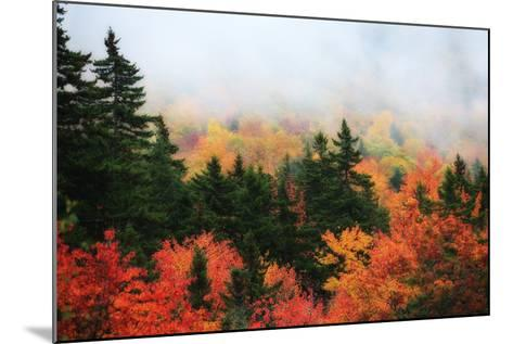 A Forest in Brilliant Autumn Hues Colors the Landscape Beneath a Thick Fog-Robbie George-Mounted Photographic Print