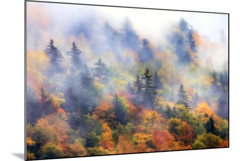 Fog over a Forested Hillside in New England Fall Colors-Robbie George-Mounted Photographic Print