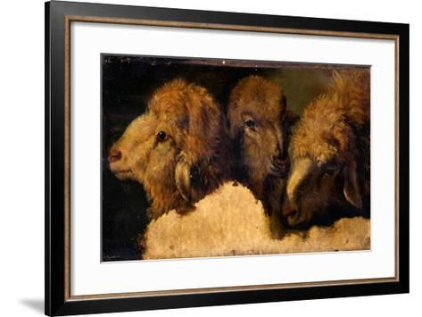 Painted Study of Sheep Heads-Francesco Londonio-Framed Art Print