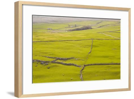 Typical Yorkshire Dales Countryside, Yorkshire, England, United Kingdom, Europe-Julian Elliott-Framed Art Print