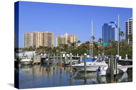 Bayfront Marina, Sarasota, Florida, United States of America, North America-Richard Cummins-Stretched Canvas Print