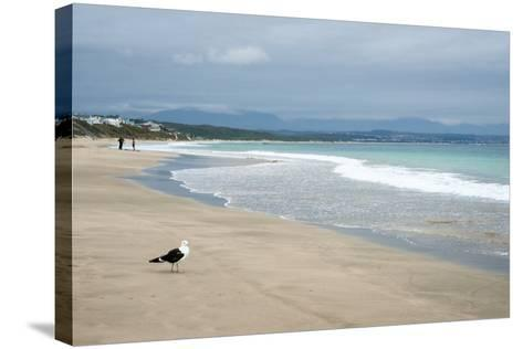 Indian Ocean Shoreline, Mosselbay, Garden Route, Western Cape, South Africa, Africa-Kim Walker-Stretched Canvas Print