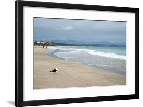 Indian Ocean Shoreline, Mosselbay, Garden Route, Western Cape, South Africa, Africa-Kim Walker-Framed Art Print