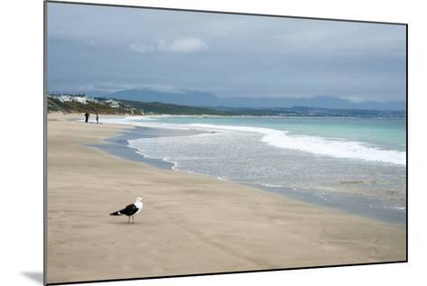 Indian Ocean Shoreline, Mosselbay, Garden Route, Western Cape, South Africa, Africa-Kim Walker-Mounted Photographic Print