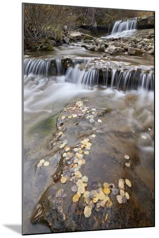 Falls on the Big Bear Creek in the Fall-James Hager-Mounted Photographic Print