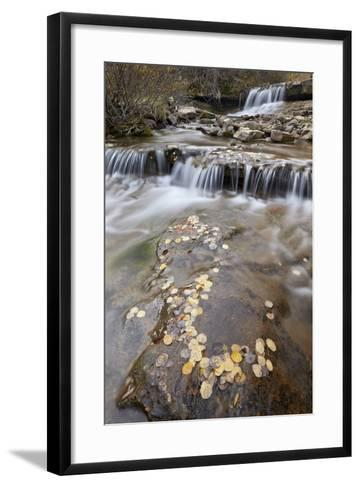 Falls on the Big Bear Creek in the Fall-James Hager-Framed Art Print
