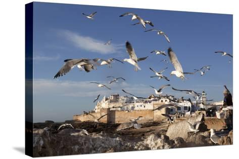 View to the Ramparts and Medina with Seagulls-Stuart Black-Stretched Canvas Print
