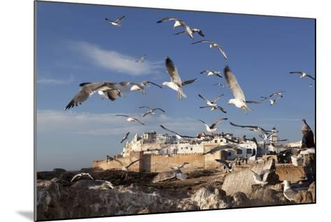 View to the Ramparts and Medina with Seagulls-Stuart Black-Mounted Photographic Print