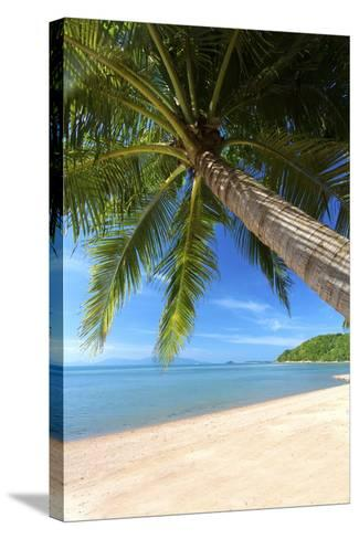 Palm Trees Overhanging Bangrak Beach, Koh Samui, Thailand, Southeast Asia, Asia-Lee Frost-Stretched Canvas Print