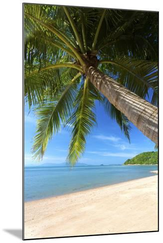 Palm Trees Overhanging Bangrak Beach, Koh Samui, Thailand, Southeast Asia, Asia-Lee Frost-Mounted Photographic Print
