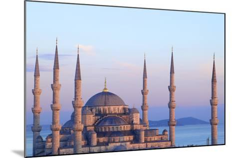 Blue Mosque (Sultan Ahmet Camii), Istanbul, Turkey-Neil Farrin-Mounted Photographic Print