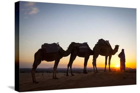 Camel Driver, Sahara Desert, Merzouga, Morocco, North Africa, Africa-Doug Pearson-Stretched Canvas Print