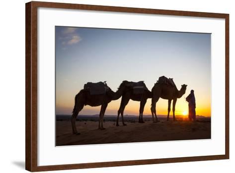 Camel Driver, Sahara Desert, Merzouga, Morocco, North Africa, Africa-Doug Pearson-Framed Art Print