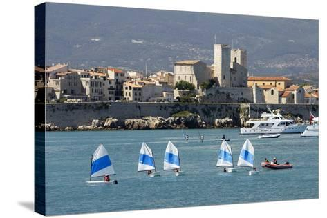 View of Old Town and Bay-Stuart Black-Stretched Canvas Print