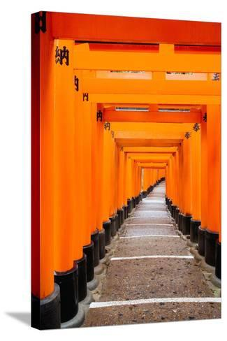 Red Torii Gates, Fushimi Inari Taisha Shrine, Kyoto, Kansai Region, Honshu, Japan, Asia-Gavin Hellier-Stretched Canvas Print