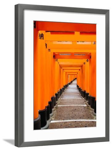 Red Torii Gates, Fushimi Inari Taisha Shrine, Kyoto, Kansai Region, Honshu, Japan, Asia-Gavin Hellier-Framed Art Print