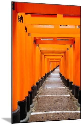 Red Torii Gates, Fushimi Inari Taisha Shrine, Kyoto, Kansai Region, Honshu, Japan, Asia-Gavin Hellier-Mounted Photographic Print