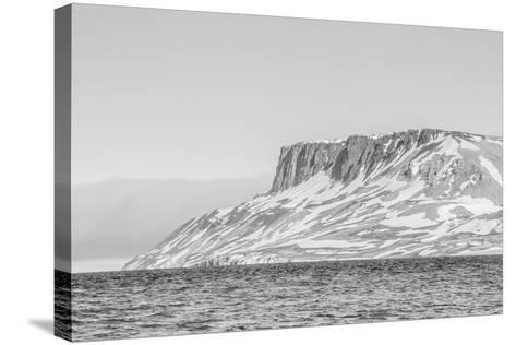 Alkefjellet (Auk Mountain) at Kapp Fanshawe, Spitsbergen, Svalbard, Norway, Scandinavia, Europe-Michael Nolan-Stretched Canvas Print
