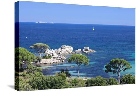 Beach of Palombaggia, Corsica, France, Mediterranean, Europe-Markus Lange-Stretched Canvas Print