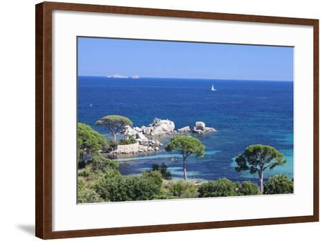 Beach of Palombaggia, Corsica, France, Mediterranean, Europe-Markus Lange-Framed Art Print