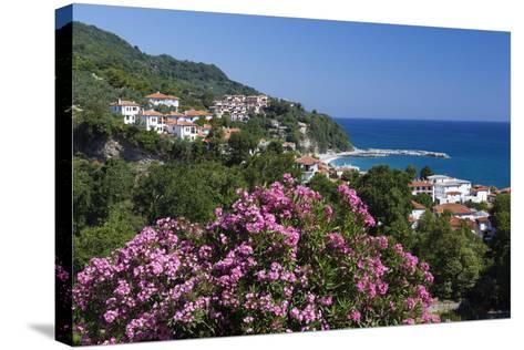 View over Resort, Agios Ioannis, Pelion Peninsula, Thessaly, Greece, Europe-Stuart Black-Stretched Canvas Print
