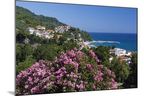 View over Resort, Agios Ioannis, Pelion Peninsula, Thessaly, Greece, Europe-Stuart Black-Mounted Photographic Print