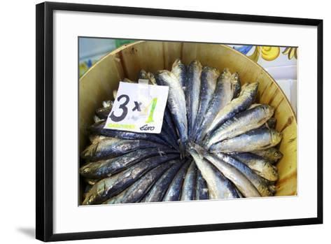 Sardines in Mercado Central (Central Market), Valencia, Spain, Europe-Neil Farrin-Framed Art Print