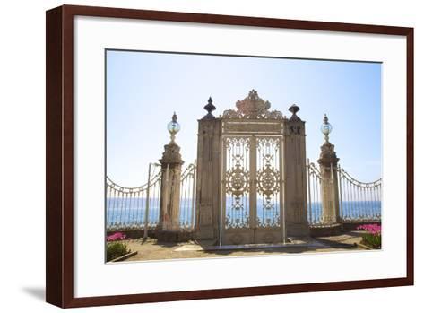 Gate to the Bosphorus, Dolmabahce Palace, Istanbul, Turkey, Europe-Neil Farrin-Framed Art Print