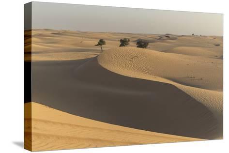The Desert Near Liwa, Abu Dhabi, United Arab Emirates, Middle East-Angelo Cavalli-Stretched Canvas Print