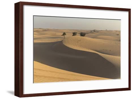 The Desert Near Liwa, Abu Dhabi, United Arab Emirates, Middle East-Angelo Cavalli-Framed Art Print