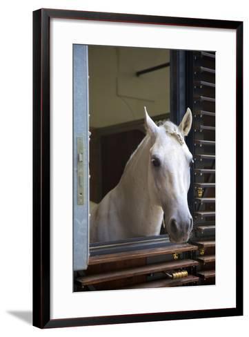 Spanish Riding School Stables, Vienna, Austria, Europe-Neil Farrin-Framed Art Print