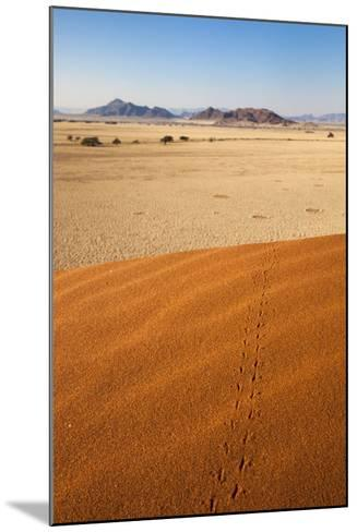 Animal Tracks in Sand, Namib Desert, Namibia, Africa-Ann and Steve Toon-Mounted Photographic Print