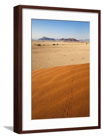 Animal Tracks in Sand, Namib Desert, Namibia, Africa-Ann and Steve Toon-Framed Art Print