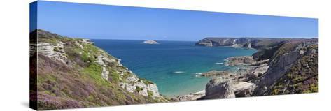 Cliffs of Cap Frehel, Cotes D'Armor, Brittany, France, Europe-Markus Lange-Stretched Canvas Print