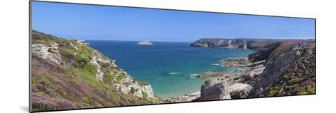 Cliffs of Cap Frehel, Cotes D'Armor, Brittany, France, Europe-Markus Lange-Mounted Photographic Print