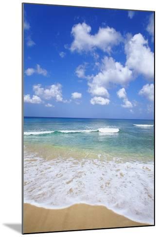 Paynes Bay, Barbados, Caribbean-Hans Peter Merten-Mounted Photographic Print