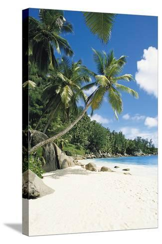 Beach, Seychelles-Robert Harding-Stretched Canvas Print