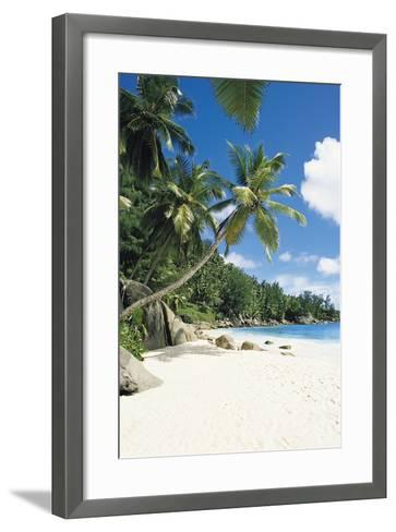 Beach, Seychelles-Robert Harding-Framed Art Print