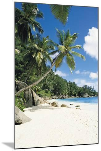Beach, Seychelles-Robert Harding-Mounted Photographic Print