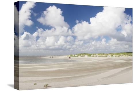 Dunes at a Beach, Sankt Peter Ording, Eiderstedt Peninsula, Schleswig Holstein, Germany, Europe-Markus Lange-Stretched Canvas Print