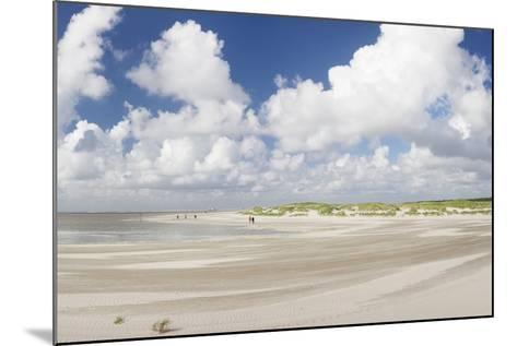 Dunes at a Beach, Sankt Peter Ording, Eiderstedt Peninsula, Schleswig Holstein, Germany, Europe-Markus Lange-Mounted Photographic Print