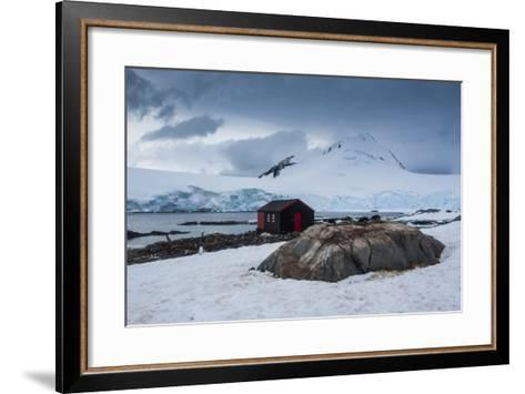 Port Lockroy Research Station, Antarctica, Polar Regions-Michael Runkel-Framed Art Print