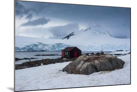 Port Lockroy Research Station, Antarctica, Polar Regions-Michael Runkel-Mounted Photographic Print