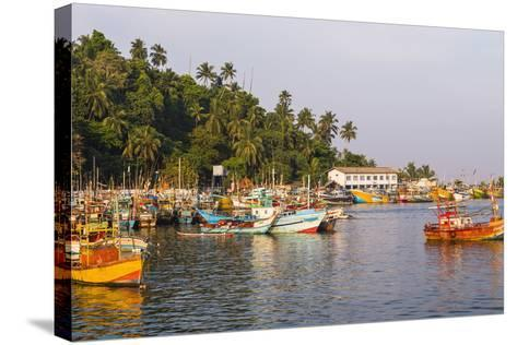 Old Commercial Fishing Boats in Mirissa Harbour, South Coast of Sri Lanka, Asia-Matthew Williams-Ellis-Stretched Canvas Print