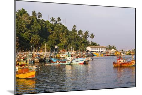 Old Commercial Fishing Boats in Mirissa Harbour, South Coast of Sri Lanka, Asia-Matthew Williams-Ellis-Mounted Photographic Print
