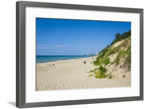 Indiana Sand Dunes, Indiana, United States of America, North America-Michael Runkel-Framed Art Print